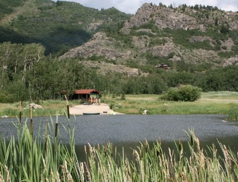 Elkins Meadows real estate in steamboat springs